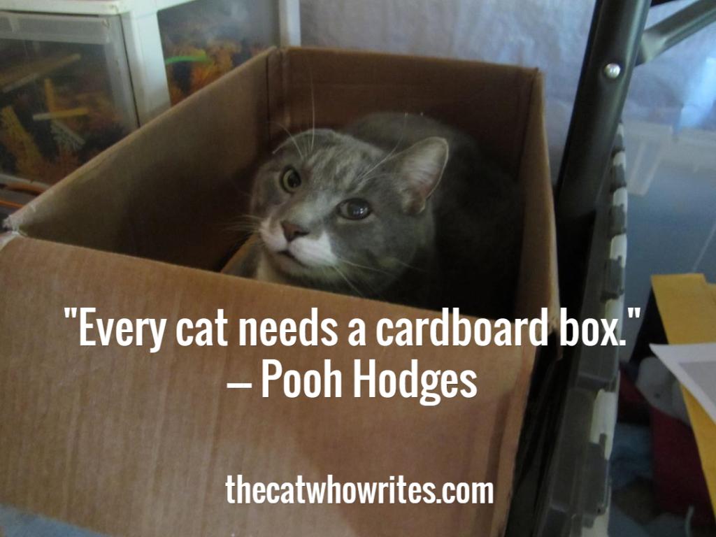 catbox2