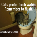 Cats prefer fresh water. Remember to flush.