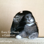 Every Cat Needs a Clubhouse