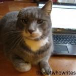 Memoir writing advice from Goinswriter.com