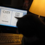 "My new book, ""CATS are better than DOGS,"" is finished"