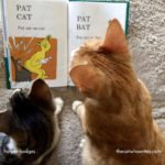 Teach your cat to read